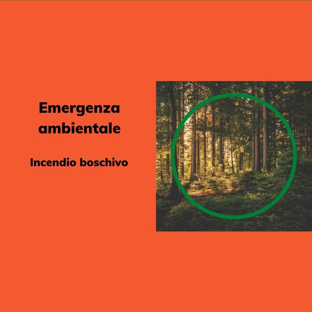 Emergenza Ambientale: Incendio Boschivo