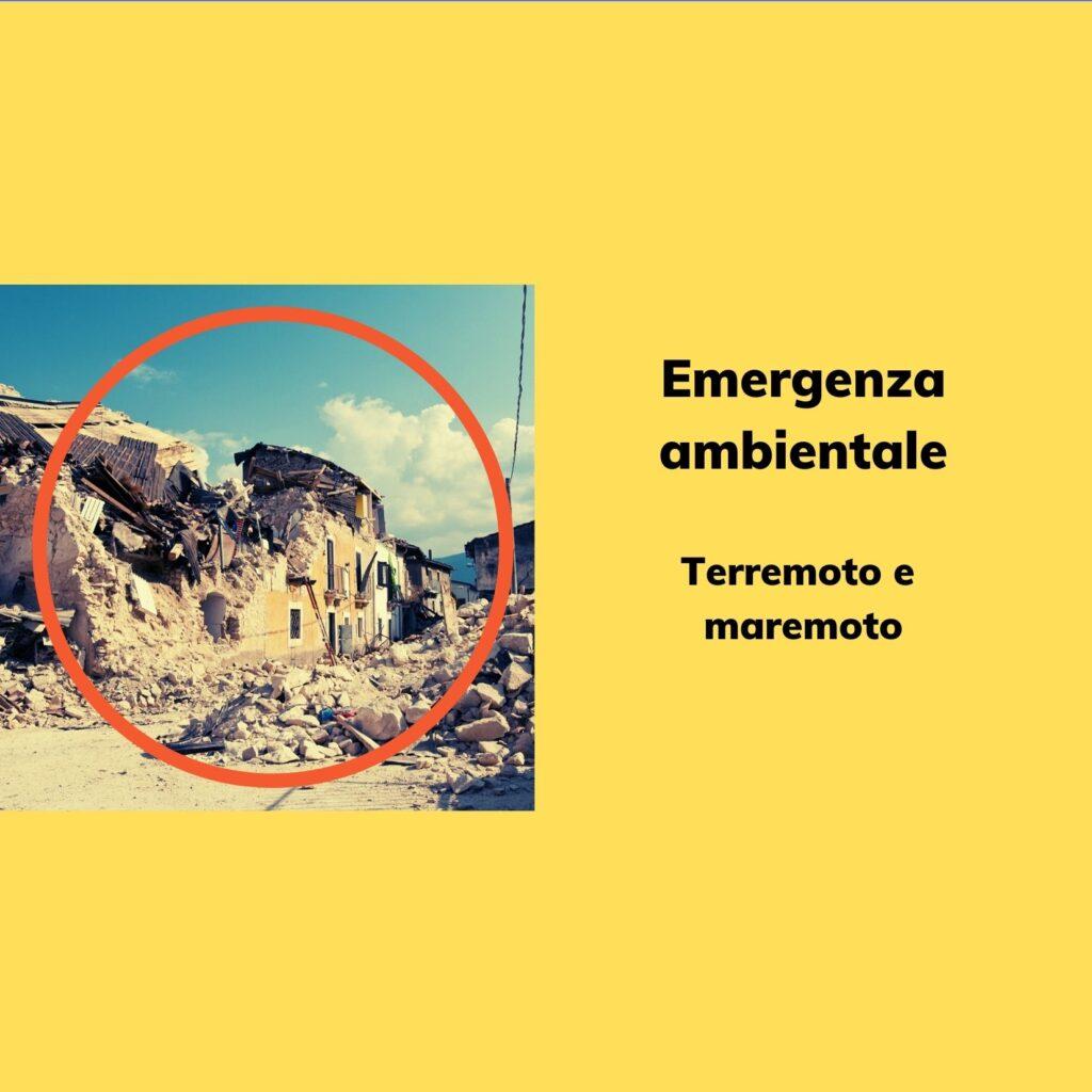 Emergenza Ambientale: Terremoto e Maremoto